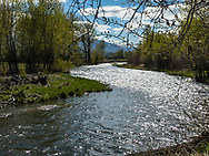 The Lemhi River flows past the Sacajawea Center on May 1, 2017, in Salmon, Idaho. (© 2017 Cindi Christie/Cyanpixel)