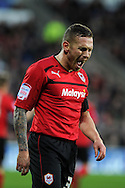 Cardiff city's Craig Bellamy shows his frustration as his team lose.NPower championship, Cardiff city v Peterborough Utd at the Cardiff city stadium in Cardiff, South Wales on Sat 15th Dec 2012. pic by Andrew Orchard, Andrew Orchard sports photography,