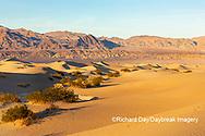 62945-00306 Sand Dunes in Death Valley Natl Park CA