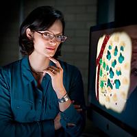 Neda Bagheri, Professor of Chemical and Engineering at the McCormick School of Engineering at Northwestern University