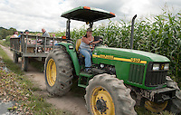 Robin Mann transports folks out to the field for the Beans and Greens corn maze on Sunday afternoon during the Harvest Fest weekend.  (Karen Bobotas/for the Laconia Daily Sun)