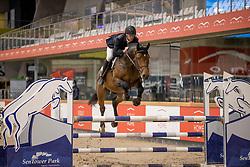 Dekens Frederik, BEL, Costello T Z<br /> Pavo Hengsten competitie - Oudsbergen 2021<br /> © Hippo Foto - Dirk Caremans<br />  22/02/2021
