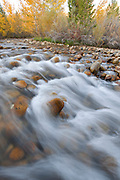 Lee Vining Creek in Fall, Mono Basin National Forest Scenic Area, California