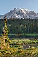 Mount Rainier seen from Reflection Lake. Mount Rainier National Park Washington