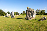 Standing stones in south east quadrant neolithic stone circle henge prehistoric monument, Avebury, Wiltshire, England UK