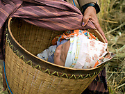 Grandmother takes care of a baby during a rice harvest in the ethnic Kayan village of Lo Pu, Kayah State, Myanmar on 16th November 2016