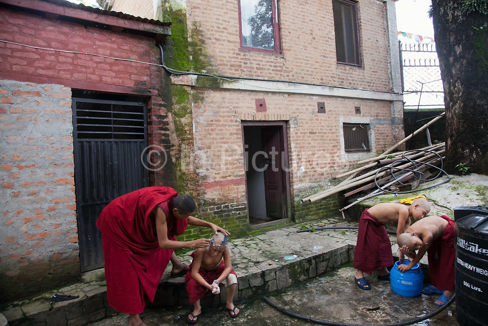 Young monks in a Tibetan monestary at the Swayambhunath temple complex, also called the Monkey Temple. The young boys are having their hair shaved by an older monk. Two of the boys has had their head shaved and are now washing out the foam and the rest of the hair.