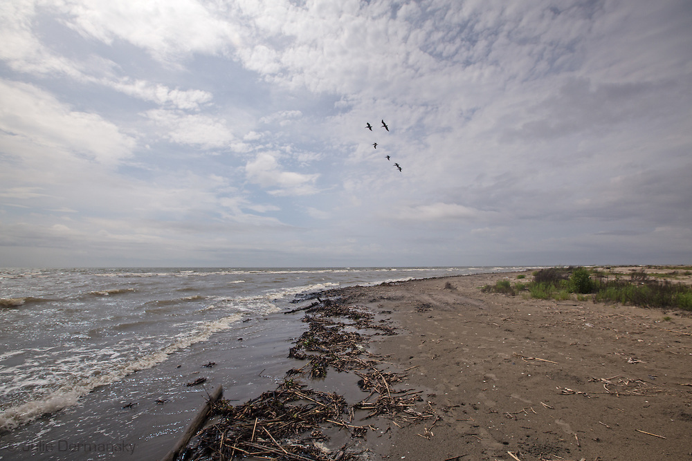 April 9, 2015, Almost five years after the BP oil spill,  A Tar matt  uncoverred on East Grande Terre, a barrier island in Plaquemines Parish that was hit hard by the BP oil spill in 2010.BP recently led an effort to clean up a tar mat uncovered on the same area of the beach a couple weeks before that was connected to the BP oil spill.