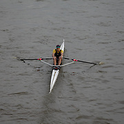 Scullers Head 2014 - Crews 1–50