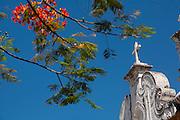 Vitoria_ES, Brasil...Convento Sao Francisco em Vitoria...Sao Francisco Convent in Vitoria...Foto: LEO DRUMOND / NITRO