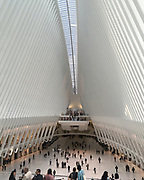 New York City The Oculus