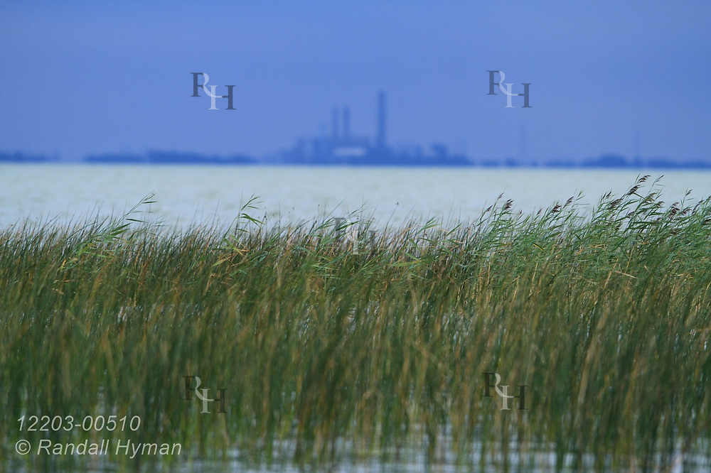 View across Saginaw Bay from Nayanquing Point State Wildlife Area of Michigan Sugar Plant in Sebewaing; Bay City, Michigan.