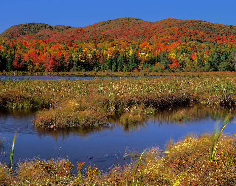 Hills with fall colors, and McAllister Pond, Lowell, VT