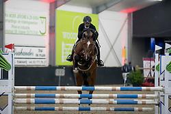 117 - Casello van de Helle, Indy Van Nerum<br /> BWP Keuring - 3de Phase<br /> Hulsterlo - Meerdonk 2017<br /> © Dirk Caremans<br /> 16/03/17