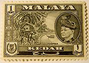 Kedah State on Malayan Postage Stamp 1957