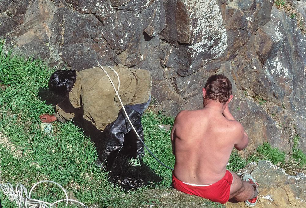 Valeriy Kononchuk and Timofey Panaugje collect murres eggs from a sea cliff, summer, Cape Khalyustkina, Chukostk Peninsula, Northeast Russia, 1992