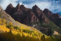 Aspen groves burst with fall colors in the mountains near Aspen, Colorado.