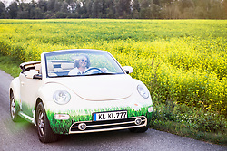 Man driving in a car Beetle Cabrio, Bavaria, Germany