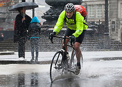 © licensed to London News Pictures. London, UK 11/06/2012. A cyclist struggling to keep going in heavy rain in Piccadilly Circus, today (11/06/12). Photo credit: Tolga Akmen/LNP