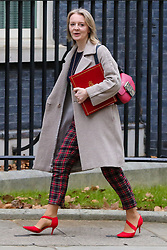 © Licensed to London News Pictures. 15/01/2019. London, UK. Liz Truss - Chief Secretary to the Treasury arrives in Downing Street for the weekly Cabinet meeting. Later today, after five days of debate in the House of Commons, MPs will vote on the British Prime Minister Theresa May's EU Withdrawal deal. Photo credit: Dinendra Haria/LNP