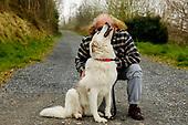 The White Dog