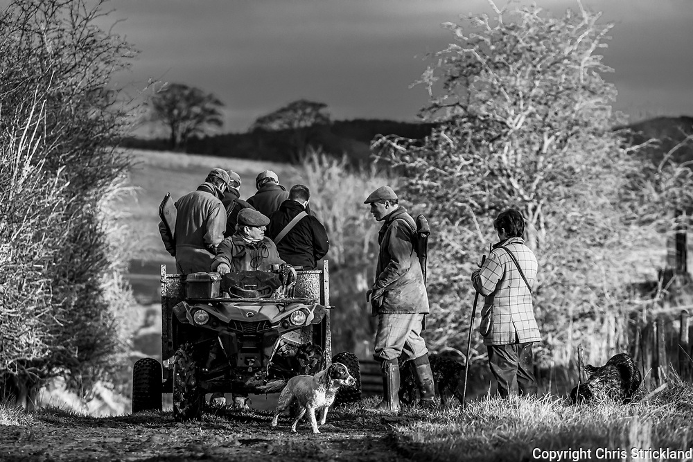 Denholm, Hawick, Scottish Borders, UK. 21st December 2019. A pheasant shoot is hosted by a farming family on undulating organic farmland near Hawick in the Scottish Borders.