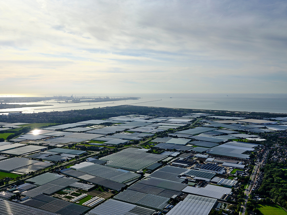 Nederland, Zuid-Holland, Gemeente Westland, 14-09-2019; Glazen stad, Kassengebied Westland, omgeving 's-Gravenzande, gezien naar Hoek van Holland en Tweede Maasvlakte.<br /> Greenhouses area in the West of the Netherlands, the heart of the production of vegetables and fruit for export. Between The Hague and Rotterdam.<br /> <br /> luchtfoto (toeslag op standard tarieven);<br /> aerial photo (additional fee required);<br /> copyright foto/photo Siebe Swart