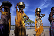 Local tribeswomen collect water from the Oasis of Lourdhia, north of Jodhpur in the Thar desert