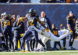 Nov 10, 2018; Morgantown, WV, USA; West Virginia Mountaineers wide receiver Gary Jennings Jr. (12) catches a pass and runs down the sideline during the first quarter against the TCU Horned Frogs at Mountaineer Field at Milan Puskar Stadium. Mandatory Credit: Ben Queen-USA TODAY Sports