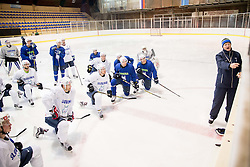 Nik Zupancic, head coach during practice session of Slovenian Ice Hockey National Team at training camp, on February 8th, 2016 in Ledna dvorana, Bled, Slovenia. Photo by Vid Ponikvar / Sportida