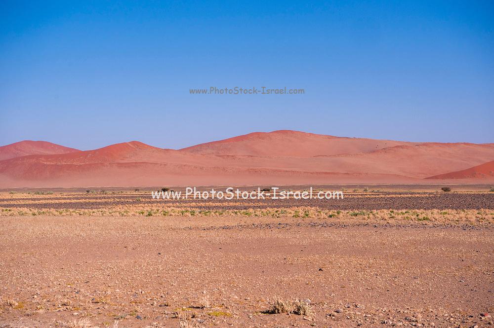 Desert landscape at Sossusvlei, Namib-Naukluft National Park, Namibia, Southern Africa.