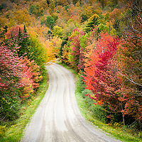Autumn colors invite one to explore the back roads of the Northeast Kingdom of Vermont. All Content is Copyright of Kathie Fife Photography. Downloading, copying and using images without permission is a violation of Copyright.