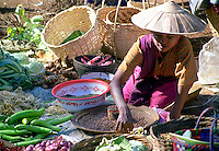 BURMA (MYANMAR) Shan State, Nyaungshwe, Inle Lake. 2006. An Intha villager tends to her plentiful produce, grown in ingenious gardens floating on the lake surface.