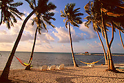 The beach at Ambergris Cay, Belize, Central America.