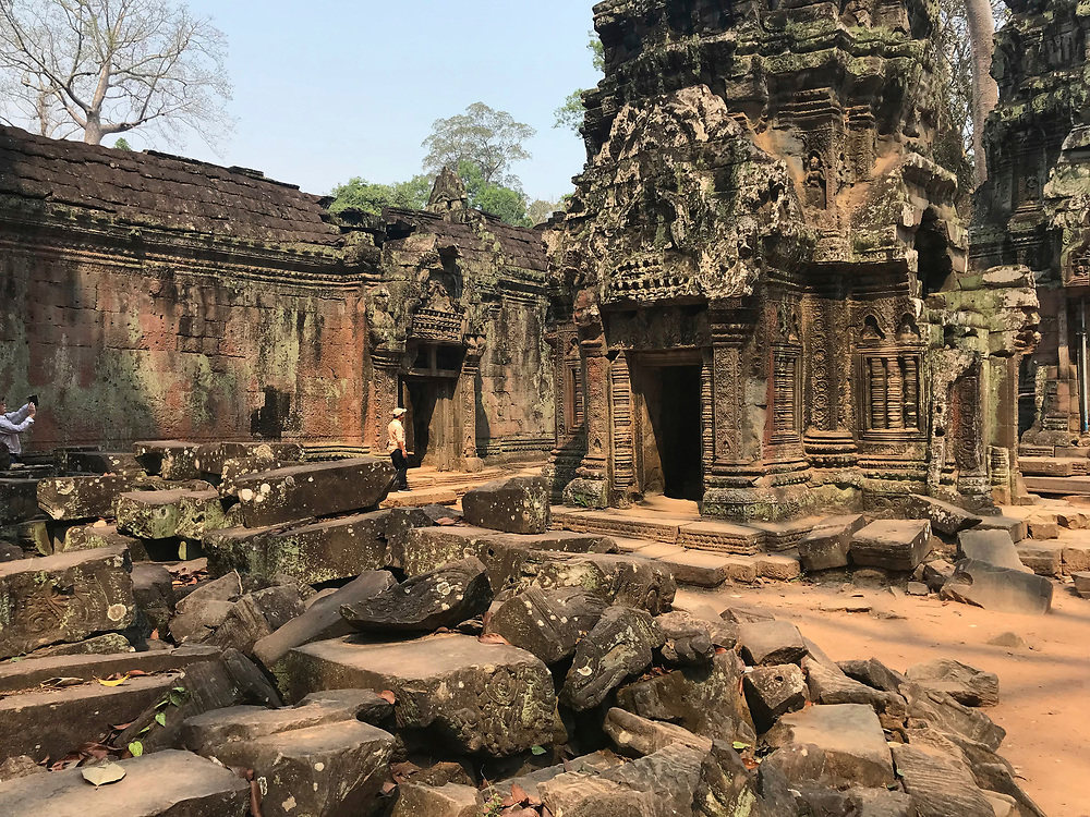 Ta Prohm temple ruins in Angkor Wat, Siem Reap, Cambodia