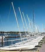 Line of identical small sailboats