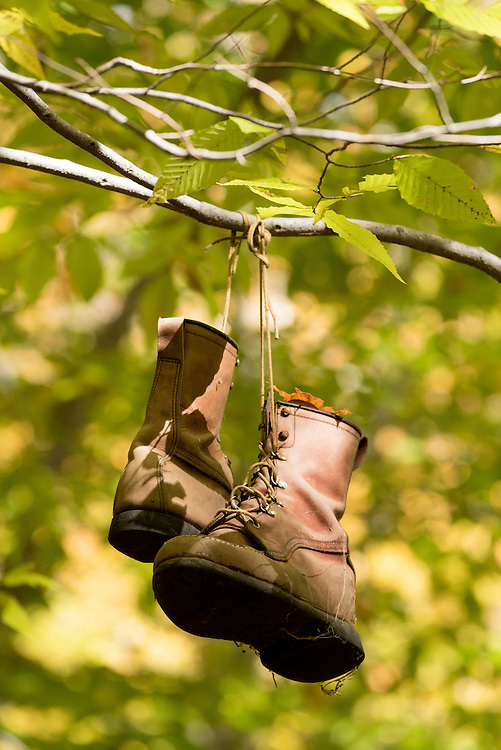 Abandonded pair of work boots hanging from a tree branch in Vermont's Green Mountains.