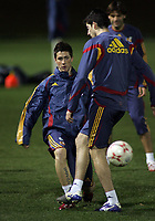 Photo: Paul Thomas.<br />Spain training session. 05/02/2007.<br /><br />Fernando Torres in action during training.