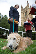 London, UK. Thursday 10th October 2013. Eric Joyce MP and his Irish Wheaten Terrier, Brodie, talking with the judges. MPs and their dogs competing in the Westminster Dog of the Year competition celebrates the unique bond between man and dog - and aims to promote responsible dog ownership.