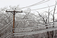 Greenville, NY - Power lines and trees are covered in ice after an ice storm on Dec. 14, 2008.