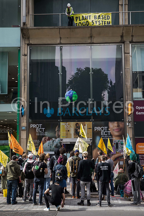 An animal rights activist from Animal Rebellion suspends a pinata from above a branch of Barclays Bank in Tottenham Court Road during a protest on 4 September 2020 in London, United Kingdom. Animal Rebellion were protesting against the provision by Barclays Bank of loans and underwriting to beef and dairy companies which are huge contributors to climate change.