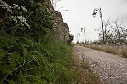 Accadia, Acchedìe in dialetto foggiano) è un comune italiano di 2.451 abitanti della provincia di Foggia in Puglia.<br /> Posto sul Subappennino Dauno a 650 metri d'altitudine, è situato a circa 50 km dal capoluogo di provincia e a circa 151 km da Bari, capoluogo di regione. Massimo orgoglio e memoria storica per la cittadinanza è il Rione Fossi, primitiva sede del comune, che, sebbene ancora in fase di restauro, rappresenta il luogo di maggior interesse turistico e fa da scenografia naturale a vari eventi culturali e musicali che si tengono periodicamente nel comune.