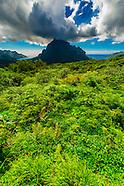 French Polynesia-Moorea-Misc.