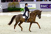 Tinne Vilhelmson Silfven - Favourit<br /> Indoor Brabant 2010<br /> © DigiShots