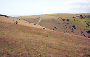 Steep chalk scarp slope near Devil's Dyke, West Sussex, England