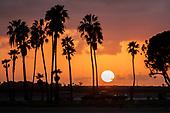 News-San Diego-Feb 22, 2020