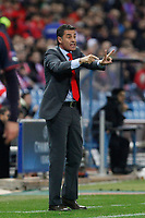 Olympiacos´s coach Michel during Champions League soccer match between Atletico de Madrid and Olympiacos at Vicente Calderon stadium in Madrid, Spain. November 26, 2014. (ALTERPHOTOS/Victor Blanco)