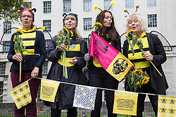London, UK. 7 October, 2019. An Extinction Rebellion choir dressed as bees sings for fellow activists blocking Whitehall on the first day of International Rebellion protests to demand a government declaration of a climate and ecological emergency, a commitment to halting biodiversity loss and net zero carbon emissions by 2025 and for the government to create and be led by the decisions of a Citizens' Assembly on climate and ecological justice.