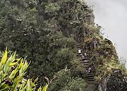The Huaynapicchu trial leads to a summit 1,180 feet above Machu Picchu.
