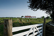Jonathan Edwards winery, North Stonington, Connecticut.